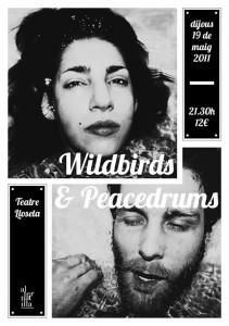 Wildbirds & Peacedrums